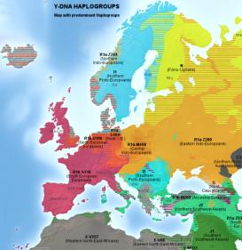 640px-Haplogroups_europe